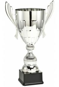 Pokal Fiesta Silber ab CHF 46.00