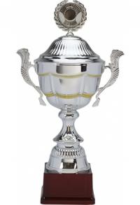 Pokal Fantastico ab CHF 43.00